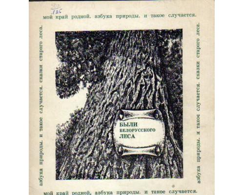 Были белорусского леса. Записки краеведа