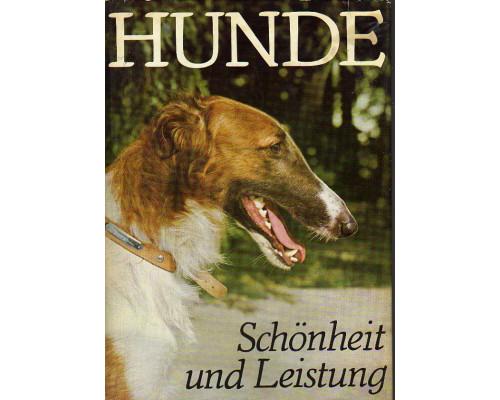 Hunde - Schonheit und Leistung. Собаки — красота и производительность