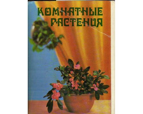 Комнатные растения. Набор открыток