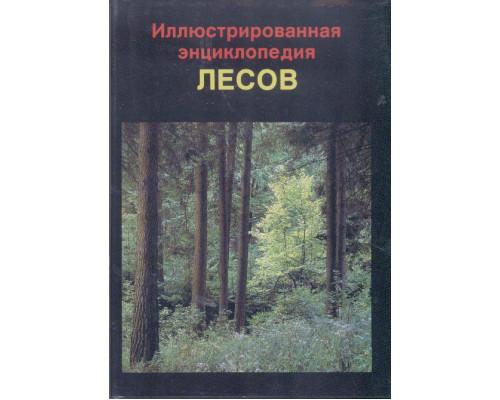 Иллюстрированная энциклопедия лесов.