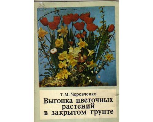 Выгонка цветочных растений в закрытом грунте
