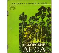 Псковские леса.