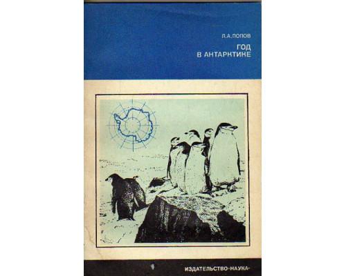 Год в Антарктике