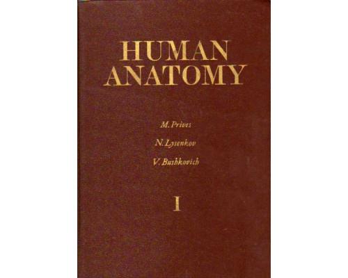 Human anatomy. Volume 1, Volume 2. (Анатомия человека .В 2-х томах)