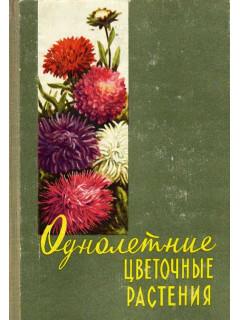 Однолетние цветочные растения
