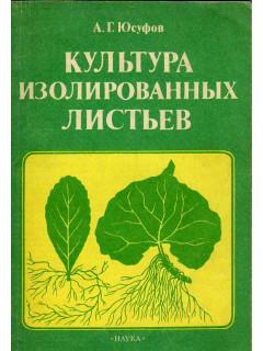 Культура изолированных листьев