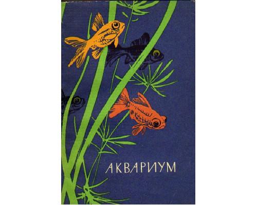 Аквариум. Устройство аквариума, содержание и разведение декоративных рыб