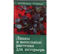 Лианы и ампельные растения для интерьера