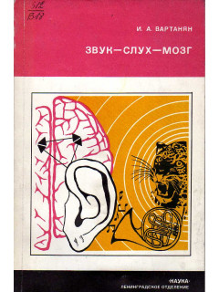 Звук-слух-мозг.