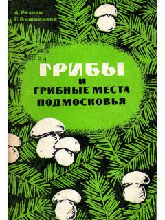 Грибы и грибные места Подмосковья.